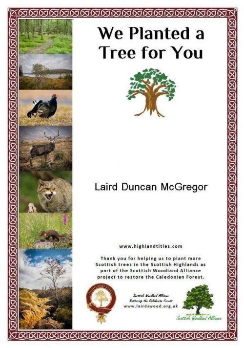 Baumpflanzung Glencoe Wood