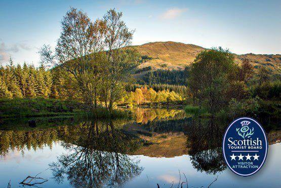 Glencoe Wood Naturreservat