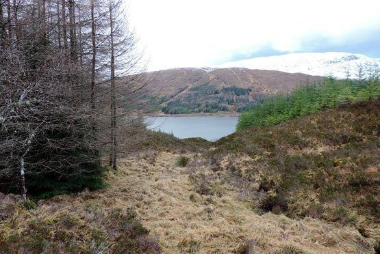 Lochaber Mountainview Naturreservat